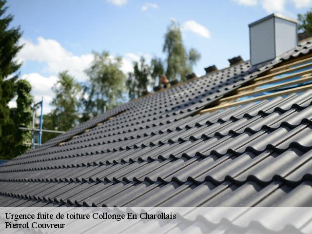 Réparation fuite de toiture à Collonge En Charollais tél: 03.59.28.25.87